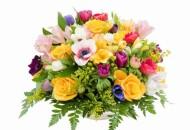 kwiaty-na-dzien-kobiet-803792-17415
